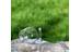 Relags Verre à vin démontable - Gourde - 200ml transparent